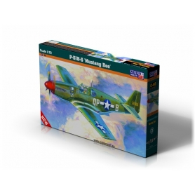 C-48 P-51B-5 Mustang Bee   1:72